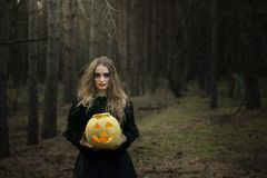 halloween Żółta bania Piękna dziewczyna w czarnej sukni w lesie obrazy stock