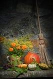 Halloween жизнь все еще Стоковое фото RF