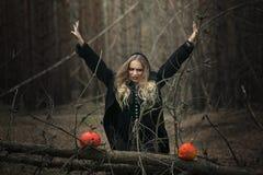 halloween красивая девушка ведьмы в черном платье в лесе Стоковое Изображение