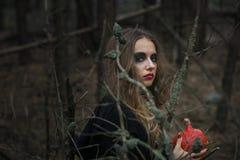 halloween красивая девушка ведьмы в черном платье в лесе Стоковая Фотография RF