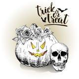 halloween Тыква носит флористическую крону Винтажной иллюстрация нарисованная рукой Стоковые Фотографии RF