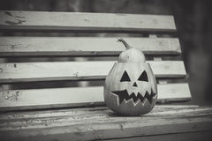 halloween черная белизна тыква лежит на стенде Стоковые Фото