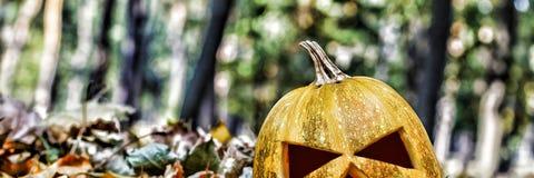 halloween halloween Royaltyfria Foton