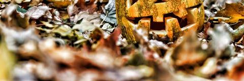 halloween halloween Fotografering för Bildbyråer