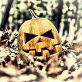 halloween halloween Royaltyfri Fotografi