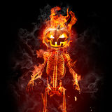 Halloween. Burning skeleton with head-pumpkin on black background Royalty Free Stock Photography