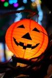 halloween. Zdjęcia Stock
