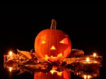 Halloween Royalty Free Stock Photo