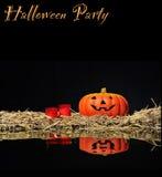 halloween Arkivbilder
