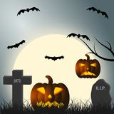Halloween. Pumpkins and bats in the cemetery Stock Photo