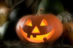 halloween. Obraz Stock