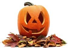 Halloween Lizenzfreie Stockbilder