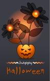 Halloween4 Fotografía de archivo libre de regalías