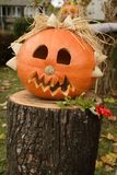 Halloween. Arrangement with pumpkin and puppet Stock Images