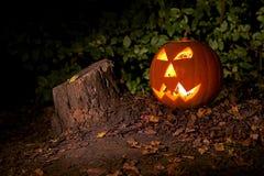 Halloween Royalty-vrije Stock Fotografie