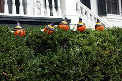halloween Obrazy Royalty Free