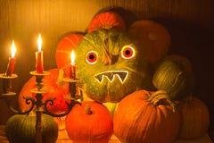 halloween Fotografia Royalty Free