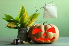 halloween Zdjęcie Royalty Free