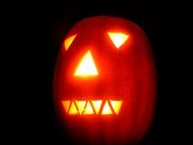 halloween. Obrazy Stock