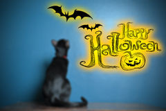 halloween Стоковые Изображения RF