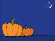 Halloween. Two pumpkins in  Halloween night,vector illustration Royalty Free Stock Photography