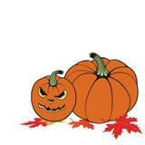 Halloween. Vector illustration with  Halloween pumpkin Royalty Free Stock Images