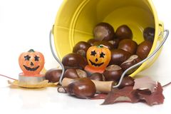 Halloween. Chestnuts spilling out from a yellow bucket royalty free stock image