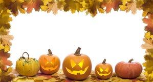 halloween Fotografering för Bildbyråer