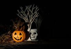 halloween Obraz Royalty Free