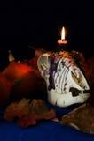 Halloween Stock Fotografie