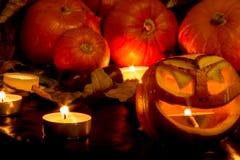 halloween Стоковые Фото
