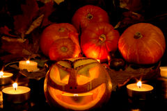 halloween Royaltyfria Foton