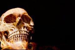 halloween стоковые фотографии rf
