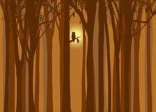 Halloween-Abbildungherbstwald mit Eule Stockfoto