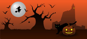 Halloween. Abstract background for Halloween with black cat with beautiful golden eyes Stock Photos
