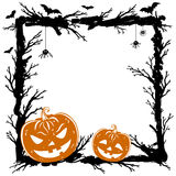 Halloween abstract background with pumpkins, black spiders Royalty Free Stock Photography