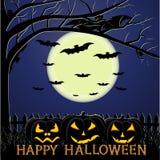 The Halloween Stock Photography