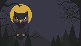 Halloween-achtergrond met het karakter van het uilbeeldverhaal Uil vectorillus royalty-vrije stock afbeeldingen
