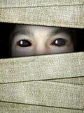 Halloween-achtergrond met verband van brijen en ogen in dark royalty-vrije stock foto's