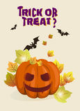 Halloween-achtergrondillustratie met pompoen Royalty-vrije Stock Afbeelding