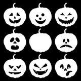 Halloween ajustou-se com abóboras Fotos de Stock