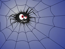 Halloween Angry spider on the blue cobweb Stock Photography