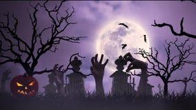 Halloween animation stock video footage