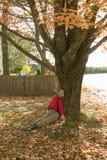 Halloween-Attrappe, die vom Herbst gelyncht wurde, färbte Baum im Acadia-Nationalpark, Maine Stockbild