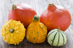 Halloween and autumn decoration with pumpkins Royalty Free Stock Images