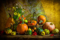 Halloween Autumn Fall Pumpkin Setting Table Still Life Vintage Stock Photography
