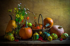 Halloween autumn fall pumpkin setting table still life vintage Stock Image