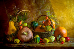 Halloween autumn fall pumpkin setting table still life vintage Royalty Free Stock Photo