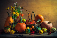 Halloween autumn fall pumpkin setting table still life vintage Royalty Free Stock Images