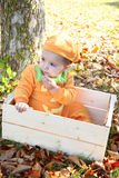 Halloween baby Royalty Free Stock Image